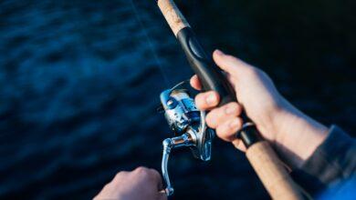 Garmin Fishfinder 140 Review || Buying Guide 2021