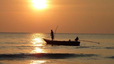 Garmin Echo 551dv Sonar FishFinder Review
